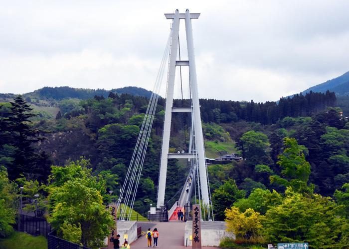 030九重桥.jpg