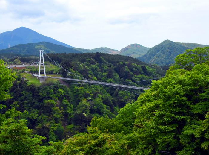 032俯瞰九重桥.jpg